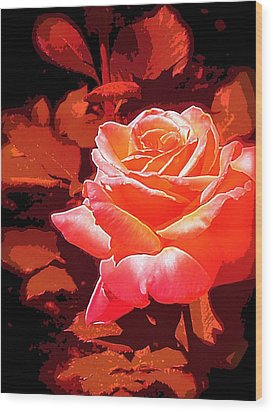 Wood Print featuring the photograph Rose 1 by Pamela Cooper
