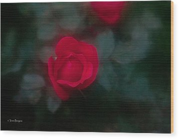 Wood Print featuring the photograph Rose 1 by Travis Burgess