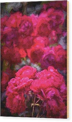 Rose 134 Wood Print by Pamela Cooper
