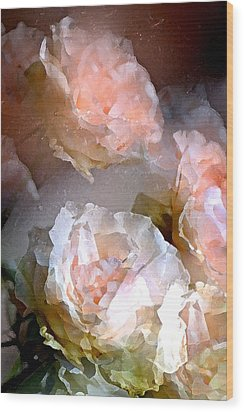 Rose 154 Wood Print by Pamela Cooper