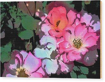 Rose 197 Wood Print by Pamela Cooper