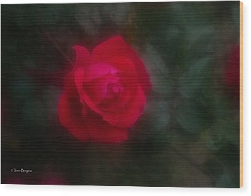 Wood Print featuring the photograph Rose 2 by Travis Burgess