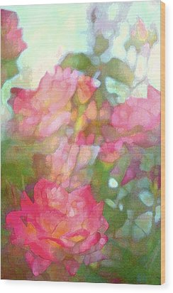 Rose 200 Wood Print by Pamela Cooper