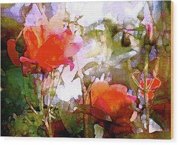 Rose 204 Wood Print by Pamela Cooper
