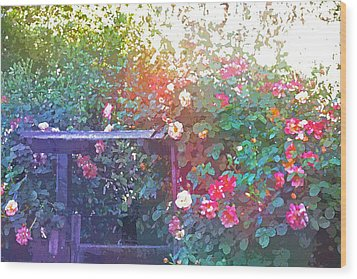 Rose 205 Wood Print by Pamela Cooper
