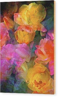 Rose 224 Wood Print by Pamela Cooper