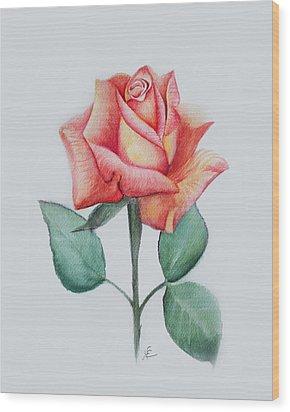 Rose 4 Wood Print by Nancy Edwards