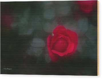 Wood Print featuring the photograph Rose 4 by Travis Burgess
