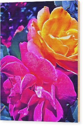 Rose 49 Wood Print by Pamela Cooper