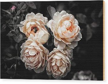 Rose 7 Wood Print
