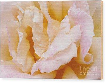 Rose Au Naturale Wood Print by Paul Clinkunbroomer