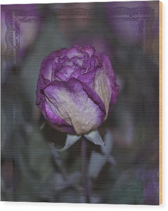 Wood Print featuring the photograph Rose Beauty After by Sandra Foster