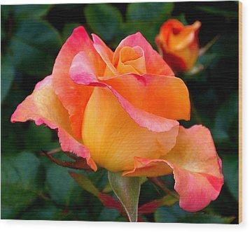 Rose Beauty Wood Print by Rona Black