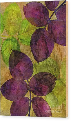 Rose Clippings Mural Wall Wood Print