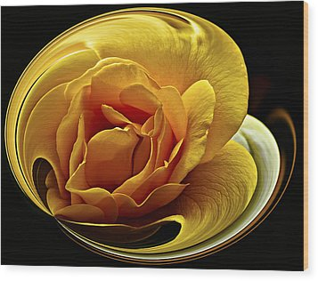 Rose Cup Wood Print by Gary Neiss