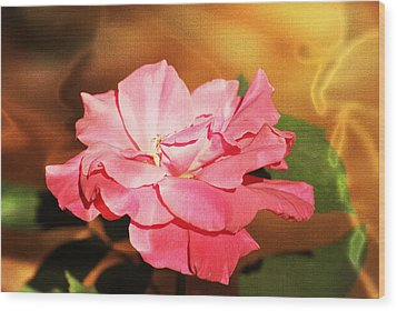 Rose Delight Wood Print by Michele Kaiser