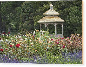 Wood Print featuring the photograph Rose Garden Gazebo by Sonya Lang