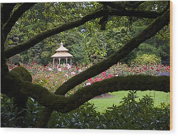 Wood Print featuring the photograph Rose Garden Window by Sonya Lang