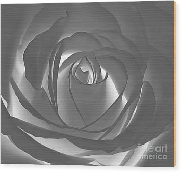 Wood Print featuring the photograph Rose by Geraldine DeBoer