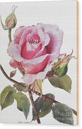Pink Rose Grace Wood Print by Greta Corens