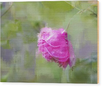 Wood Print featuring the photograph Rose In Pink by Linde Townsend