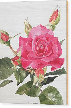 Watercolor Red Rose Margaret Wood Print