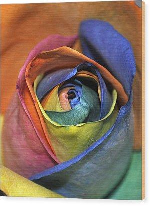 Rose Of Equality Wood Print