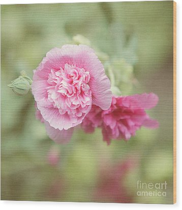 Rose Of Sharon Wood Print by Kay Pickens