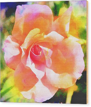 Rose On Canvas  Wood Print by Cathie Tyler