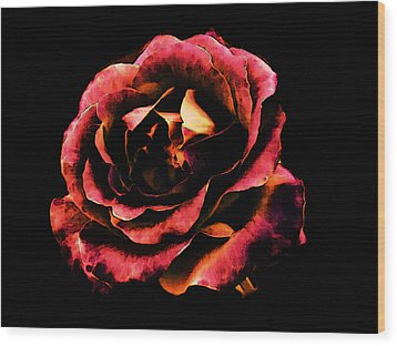 Rose Red Wood Print by Persephone Artworks