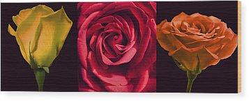 Wood Print featuring the photograph Rose Triad I by John Hansen