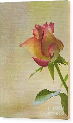 Rose Wood Print by Veikko Suikkanen