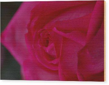 Rose6 Wood Print by Kennith Mccoy