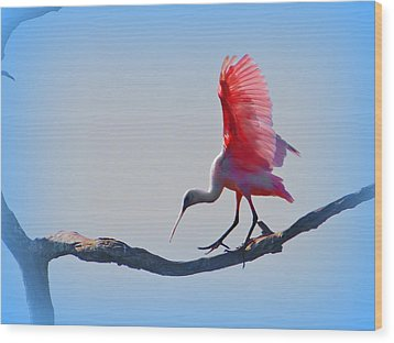 Wood Print featuring the photograph Roseate Spoonbill by David Mckinney