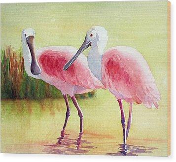 Roseate Spoonbills Wood Print by Judy Mercer