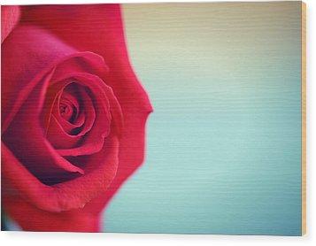 Roseblue Wood Print by Lorella  Schoales