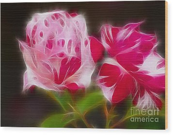 Roses 6221-fractal Wood Print by Gary Gingrich Galleries