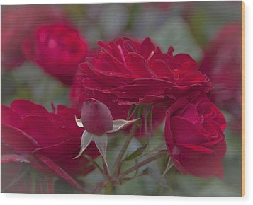Roses And Roses Wood Print by Maj Seda