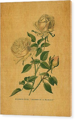 Roses Are Golden Wood Print by Sarah Vernon