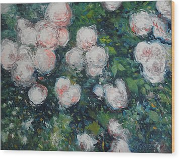 Roses At Diemersfontein Cape Town South Africa Wood Print by Enver Larney