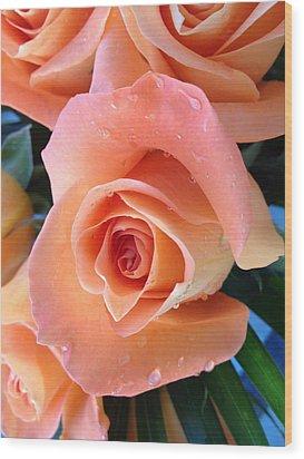 Roses Wood Print by Paula Brown