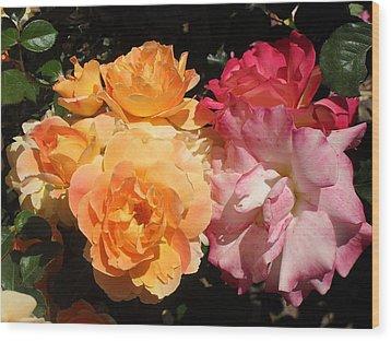Roses Roses Roses Wood Print by Mark Barclay