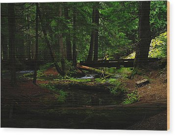 Ross Creek Montana Wood Print by Jeff Swan