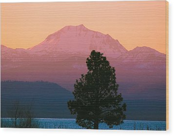 Rosy Lassen Wood Print by Jan Davies