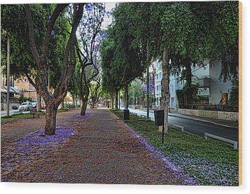 Rothschild Boulevard Wood Print by Ron Shoshani
