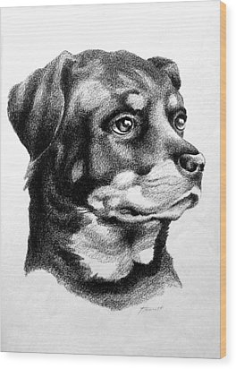 Rottweiler Devotion Wood Print by Patricia Howitt