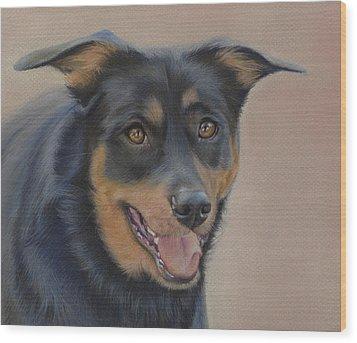 Rottweiler - Drawing Wood Print by Natasha Denger