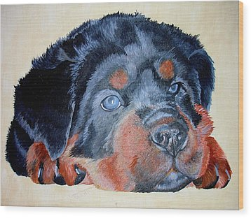 Wood Print featuring the painting Rottweiler Puppy Portrait by Tracey Harrington-Simpson