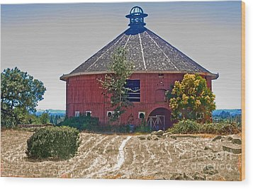 Round Barn Wood Print by Helen Haw