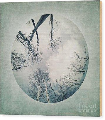 round treetops I Wood Print by Priska Wettstein